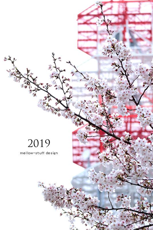2019年の桜いろいろ。_d0124248_21124748.jpg