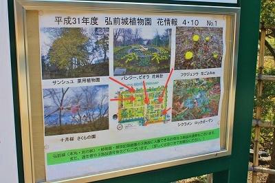 弘前城植物園オープン_2019.04.10_d0131668_16224691.jpg