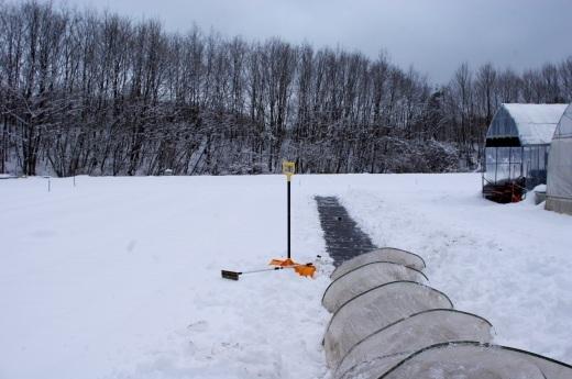 4月なのに雪かき_c0110869_11060997.jpg