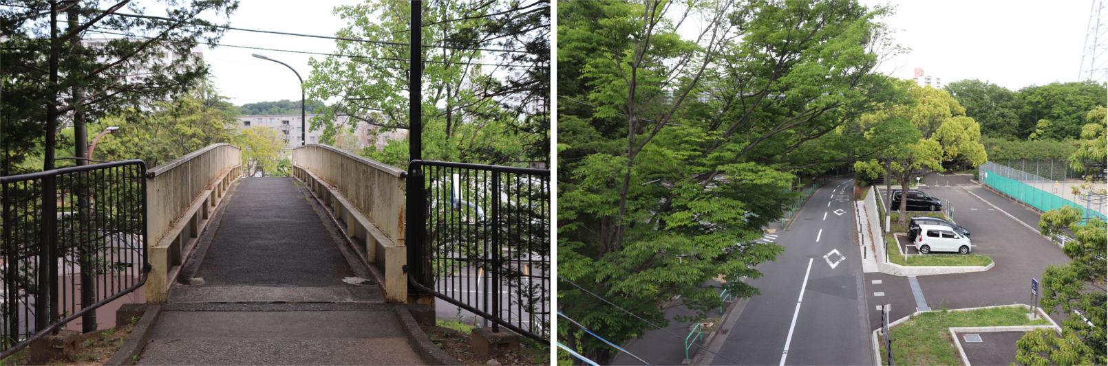[多摩NTの橋ぜんぶ撮影PJ] No.81~85 永山地区の橋_a0332275_23143747.jpg