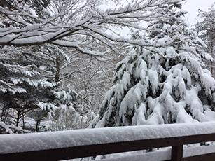 大雪_e0182479_21240243.jpg