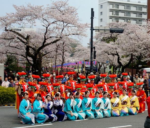 文京さくら祭り@播磨さくら坂 3/31_c0180686_08270181.jpg