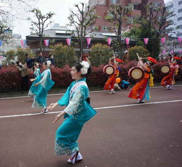 文京さくら祭り@播磨さくら坂 3/31_c0180686_08273713.jpg