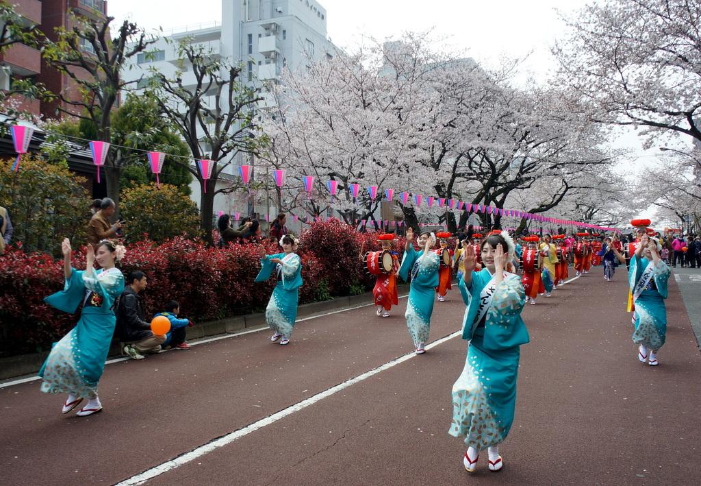 文京さくら祭り@播磨さくら坂 3/31_c0180686_08274152.jpg