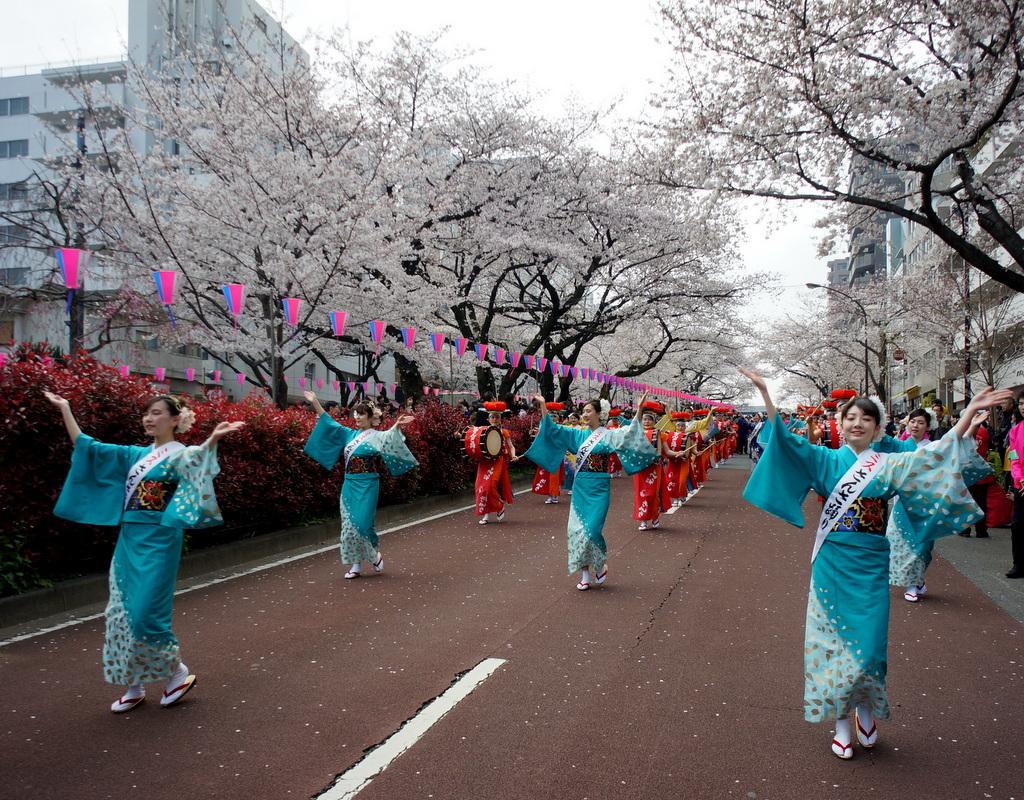 文京さくら祭り@播磨さくら坂 3/31_c0180686_08274522.jpg