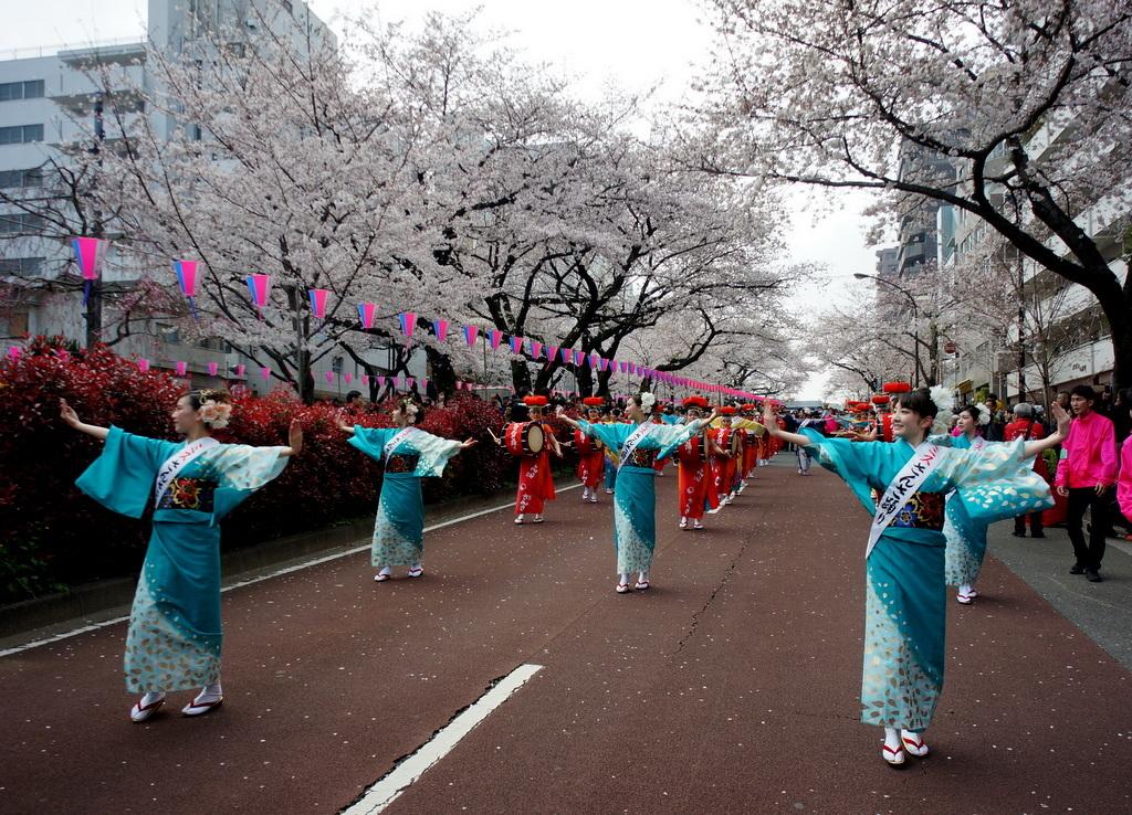 文京さくら祭り@播磨さくら坂 3/31_c0180686_08275033.jpg