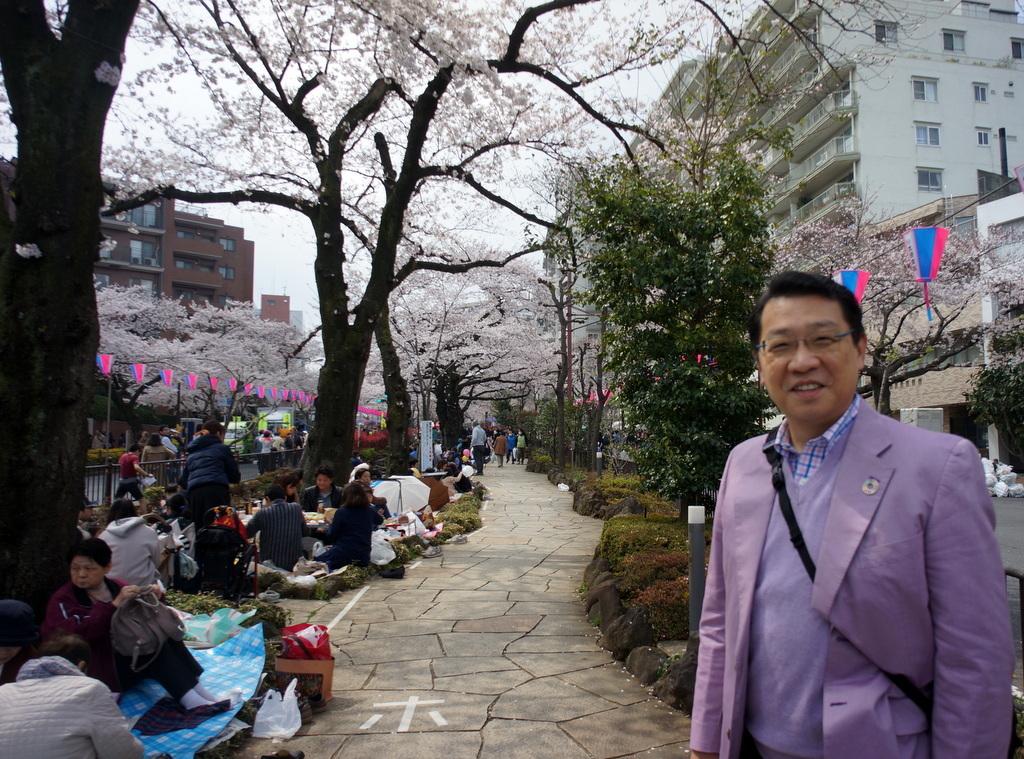 文京さくら祭り@播磨さくら坂 3/31_c0180686_08284779.jpg