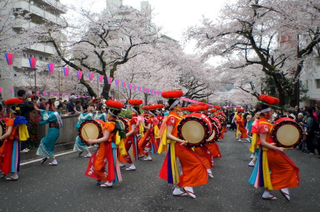 文京さくら祭り@播磨さくら坂 3/31_c0180686_08292956.jpg