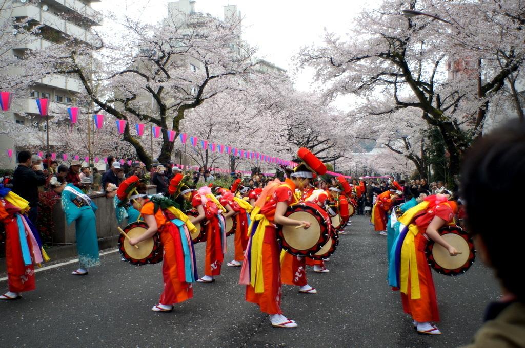 文京さくら祭り@播磨さくら坂 3/31_c0180686_08293374.jpg