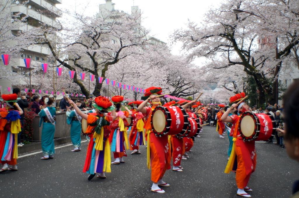文京さくら祭り@播磨さくら坂 3/31_c0180686_08293738.jpg