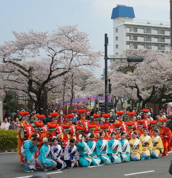 文京さくら祭り@播磨さくら坂 3/31_c0180686_08295925.jpg