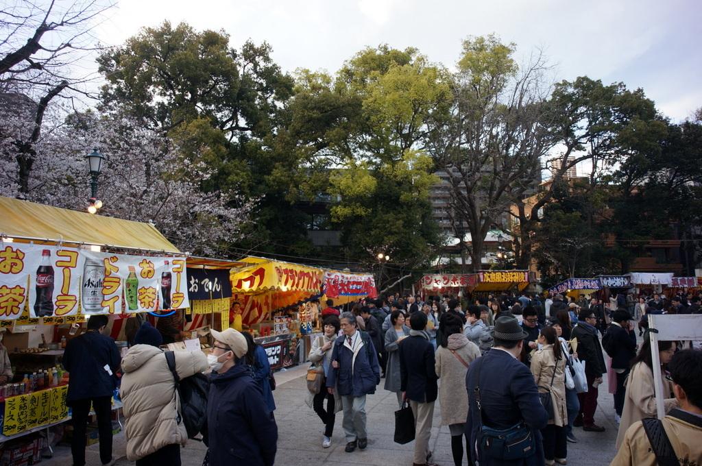 上野の櫻、さんさき坂カフェ、そして外堀土手から靖国神社_c0180686_11401646.jpg