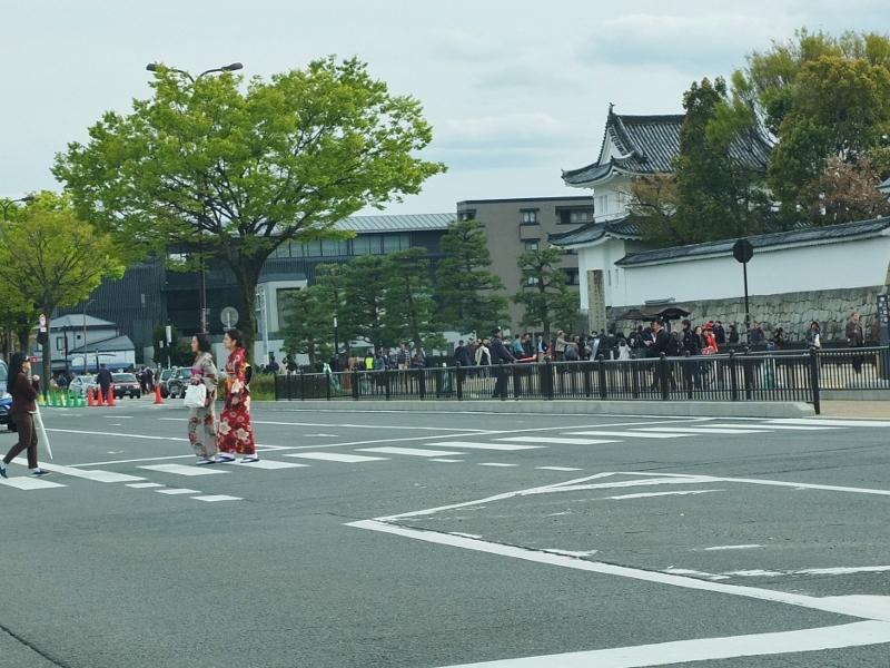 桜花爛漫な都大路を駆け抜ける_b0212396_23052580.jpg