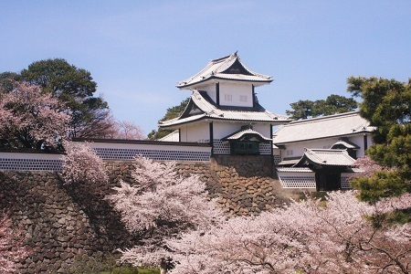 金沢の桜 2019.04.11_c0213599_21574397.jpg