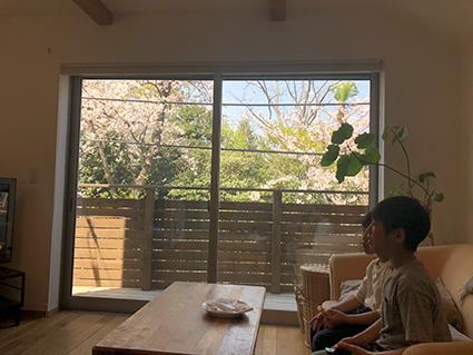 桜の見えるりんごの家_a0148909_10071711.jpeg