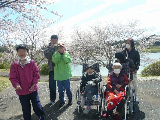 4/11 天啓公園_a0154110_08144591.jpg