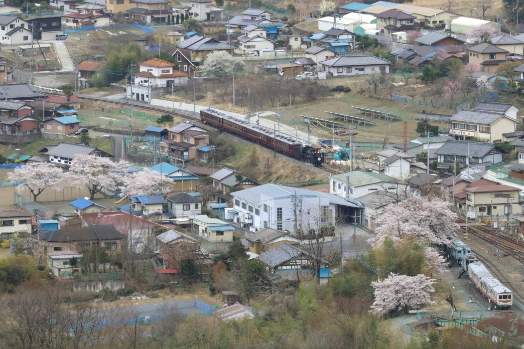 桜と保存車両の待つ駅を目指す汽車 - 2019年桜・秩父 -_b0190710_21314811.jpg