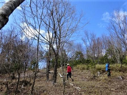 企業の森活動日記 中部ガス・ガステックサービス㈱ サーラの森_d0105723_08263529.jpg