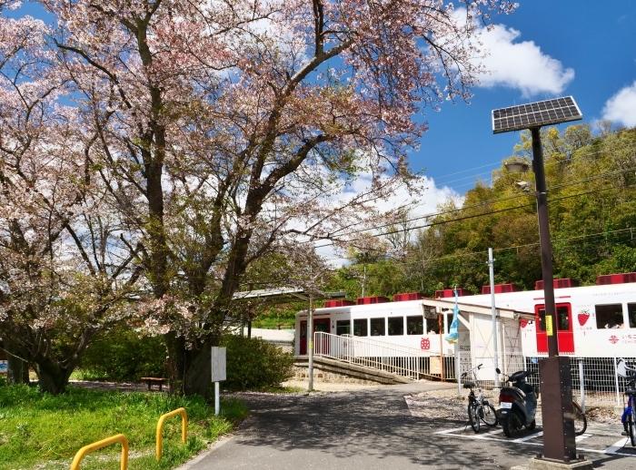 三年ぶりの大池遊園  2019-04-14 00:00   _b0093754_23084223.jpg