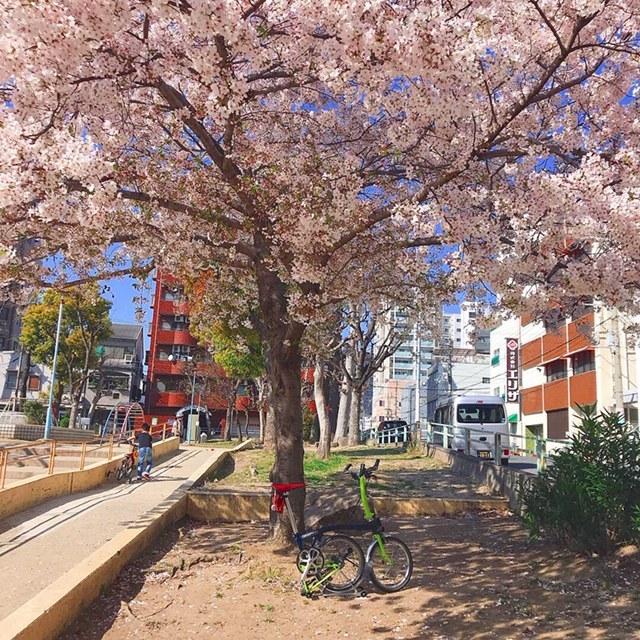 大阪に遊びに行って来ました☆彡_d0197762_11090108.jpeg
