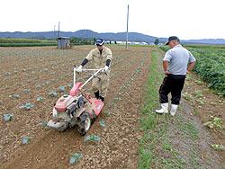 各農家へのホームステイ(農作業実習) _a0208976_16404580.jpg