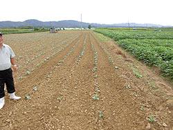 各農家へのホームステイ(農作業実習) _a0208976_16412628.jpg