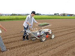 各農家へのホームステイ(農作業実習) _a0208976_16421687.jpg