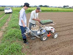 各農家へのホームステイ(農作業実習) _a0208976_1642480.jpg