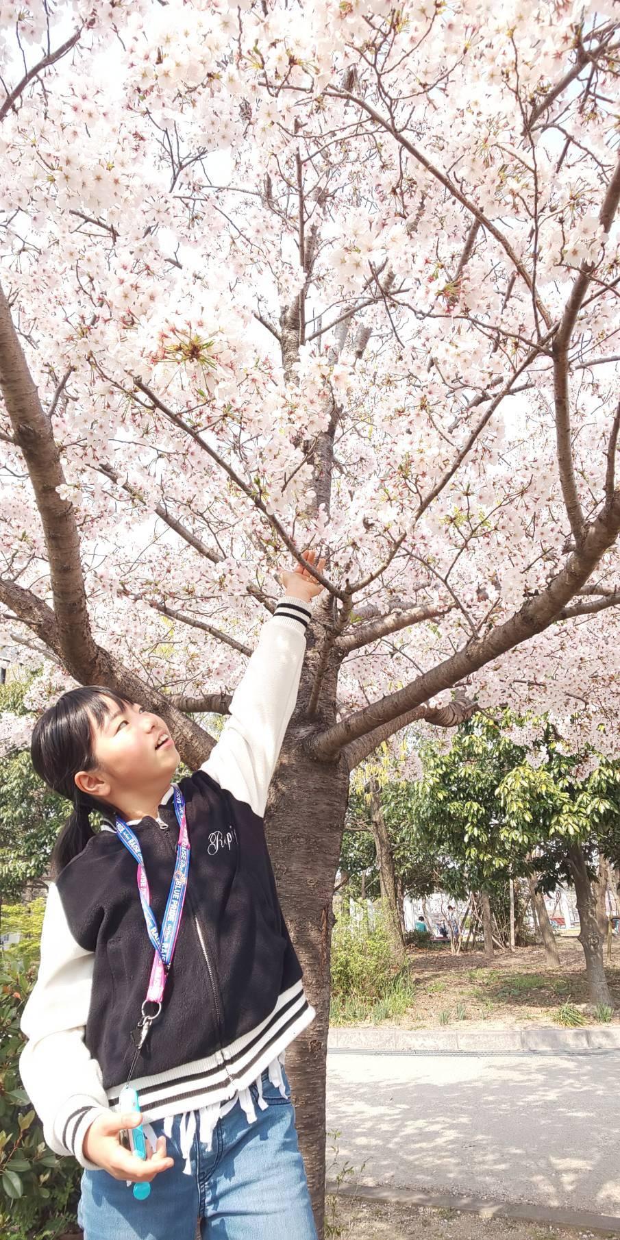 お花見🌸_d0178587_19302013.jpeg