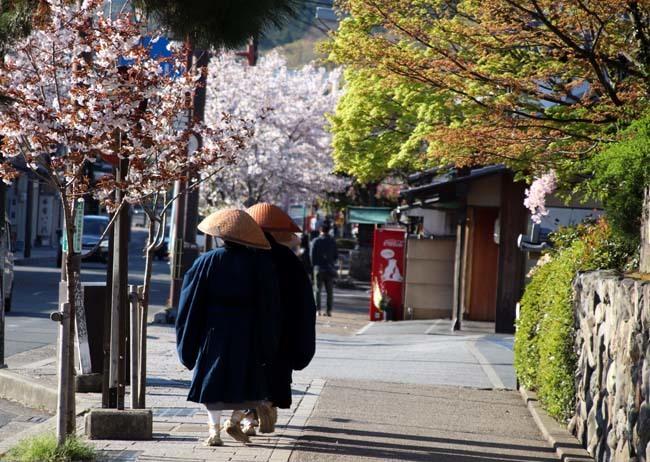 嵐山天龍寺 咲き納め_e0048413_20534098.jpg