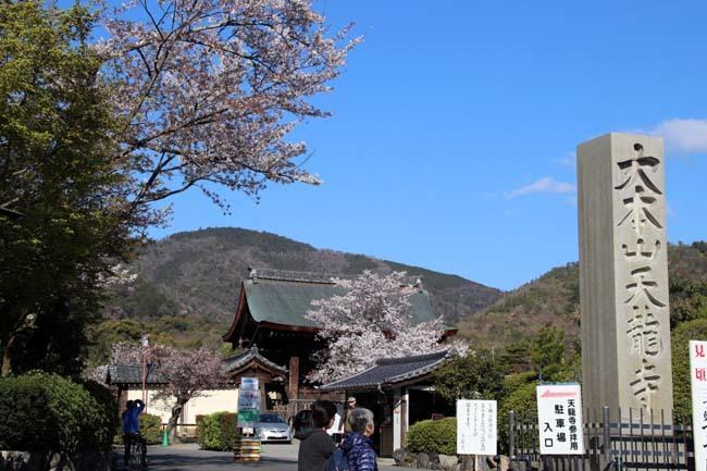 嵐山天龍寺 咲き納め_e0048413_20534709.jpg