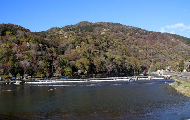 嵐山天龍寺 咲き納め_e0048413_20535007.jpg