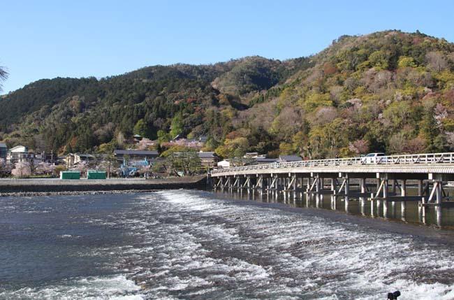 嵐山天龍寺 咲き納め_e0048413_20535589.jpg