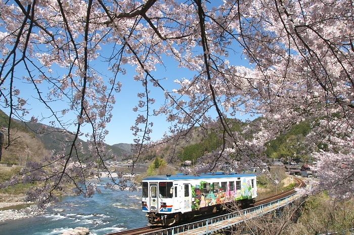 2019年・春/鉄道と桜#2-長良川鉄道_e0056449_18232928.jpg