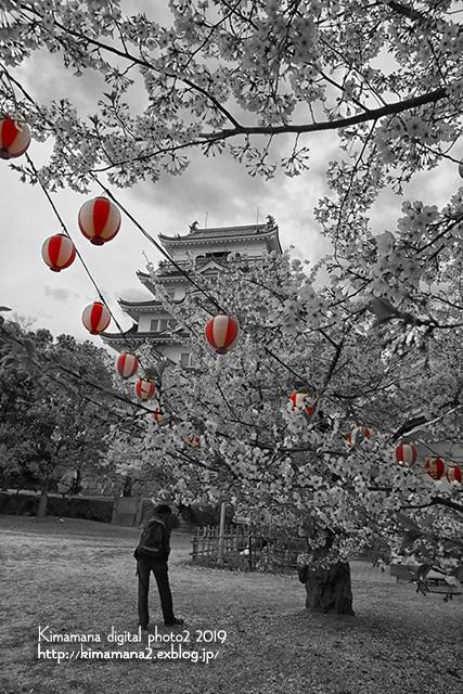 福山城の桜_f0324756_10240338.jpg