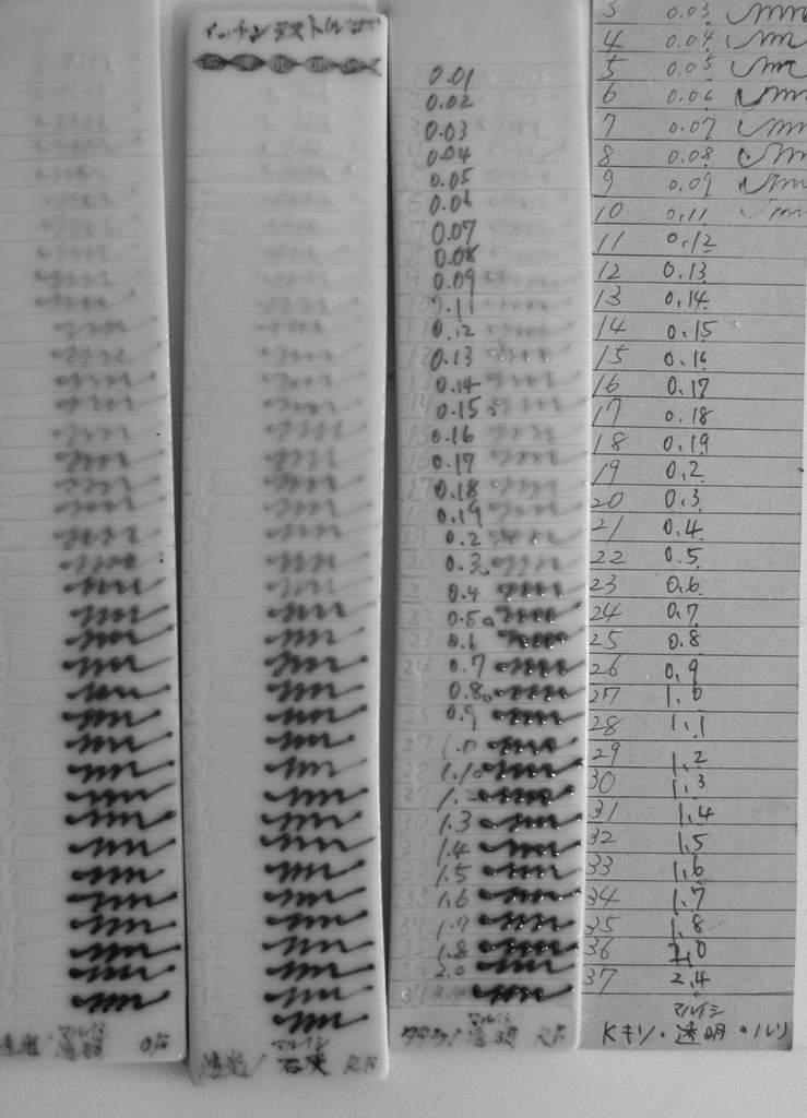 「森岡希世子・澤谷由子 二人展 見目麗し」8日目-3_d0087761_131330100.jpg
