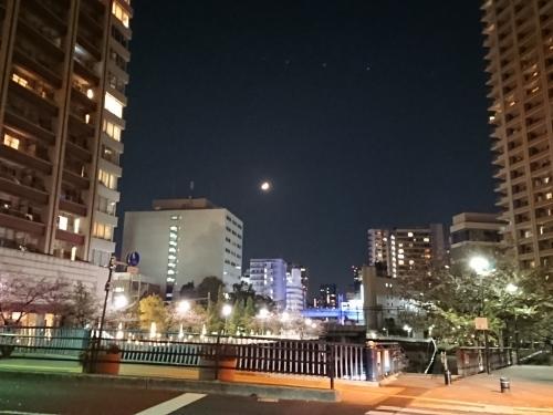 根室花まる KITTE丸の内店_c0100865_16333794.jpg
