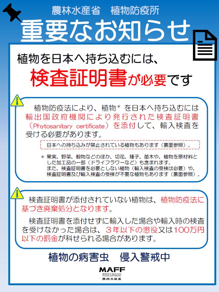 アグラオネマの栽培方法準備編【2019年度版】_a0067578_08524851.png