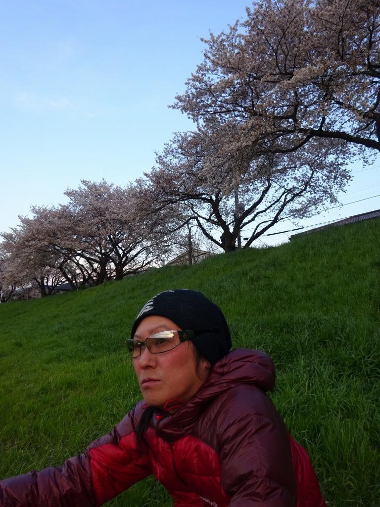 夕花見 柳瀬川_d0061678_11184410.jpg