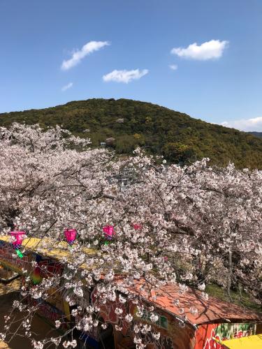花見と春休み_d0191206_23040444.jpg
