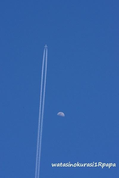 飛行機♪_c0365711_17185212.jpg