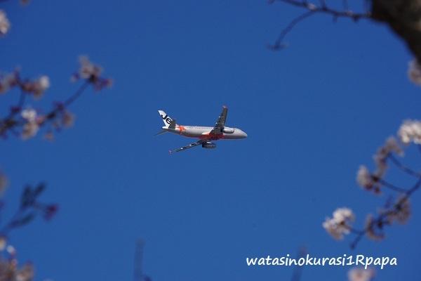 飛行機♪_c0365711_17185215.jpg