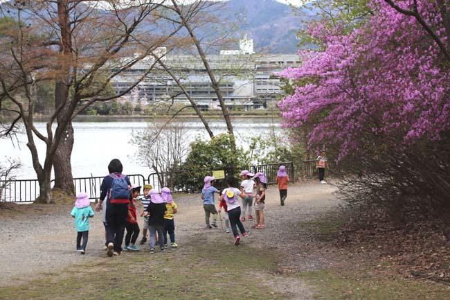 桜からつつじへ_e0048413_17503100.jpg