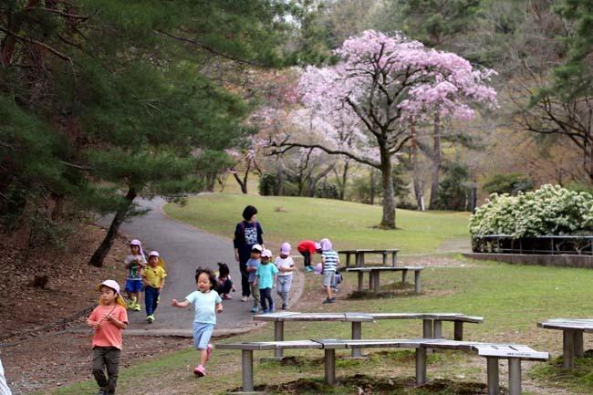 桜からつつじへ_e0048413_17503371.jpg