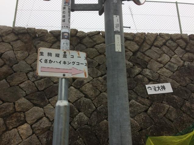 (11)ナガスネヒコと白龍大神_b0409627_23555410.jpg