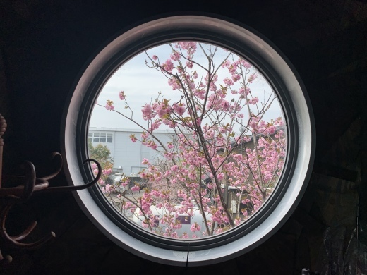 琵琶湖平安樓お花見園遊会 2019_a0154045_11052757.jpeg