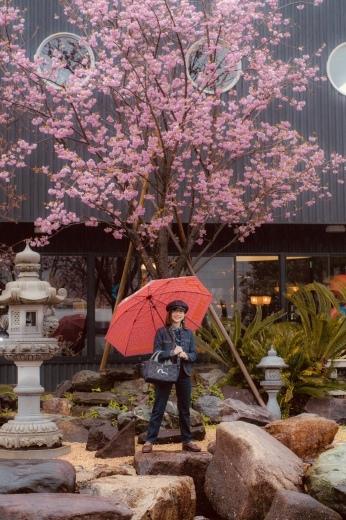 琵琶湖平安樓お花見園遊会 2019_a0154045_11114508.jpeg
