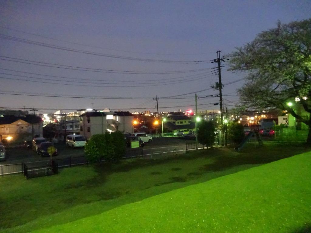 昨日もひとり花見、朝霞浜崎公園は寒かった_d0061678_10390146.jpg