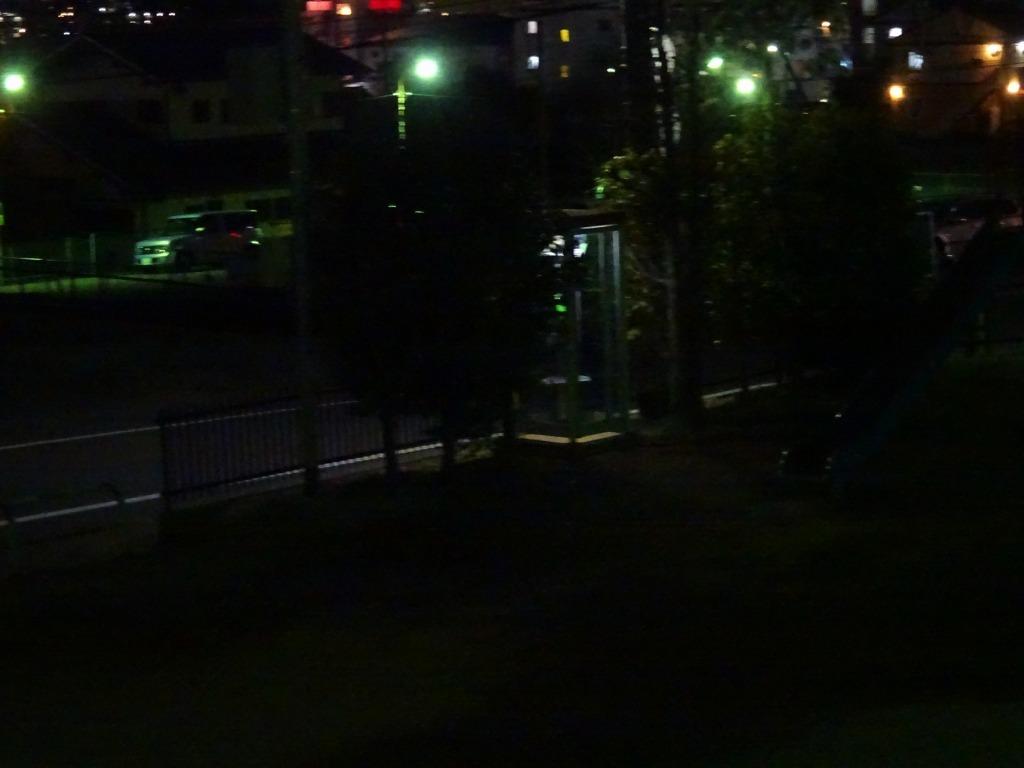昨日もひとり花見、朝霞浜崎公園は寒かった_d0061678_10414069.jpg