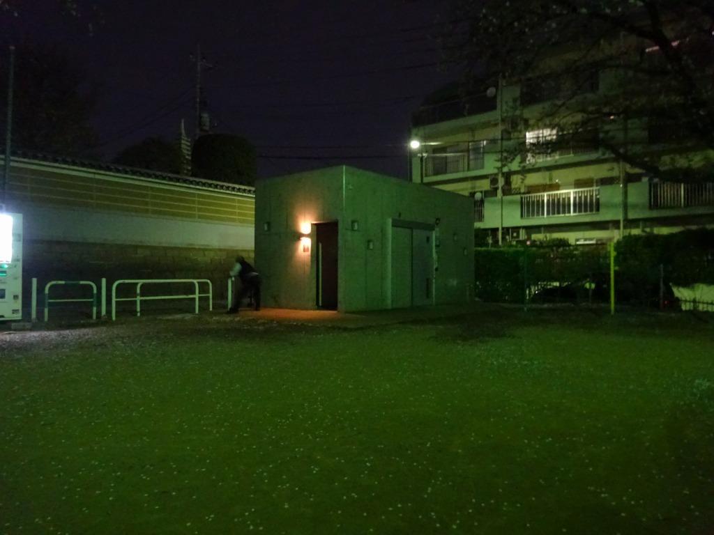 昨日もひとり花見、朝霞浜崎公園は寒かった_d0061678_10431614.jpg